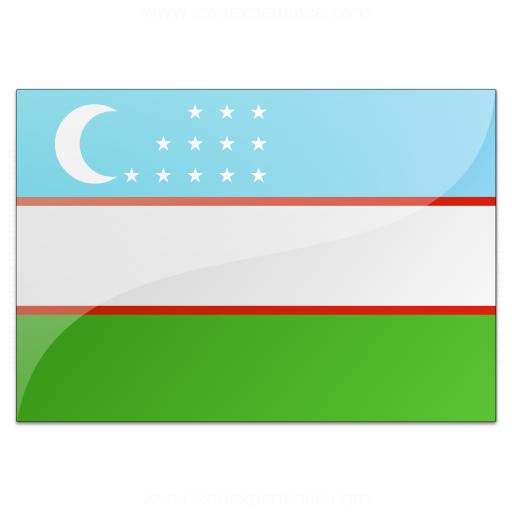 Flag Uzbekistan Icon