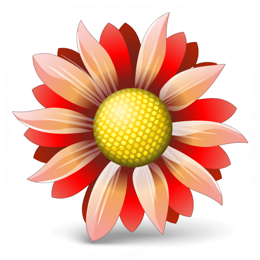 Flower Red Icon