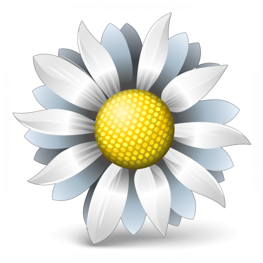 Flower White Icon