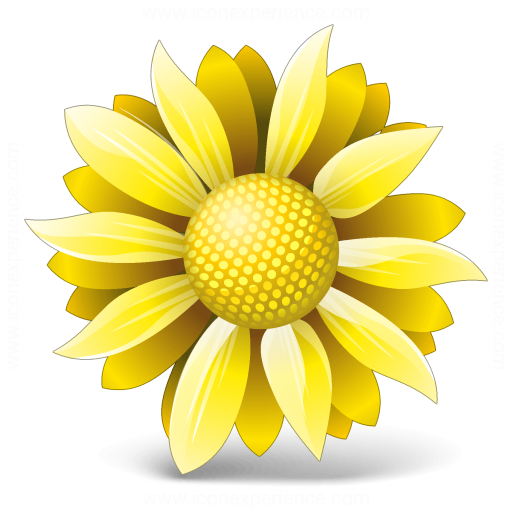 Flower Yellow Icon