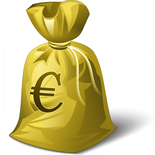 Moneybag Euro Icon