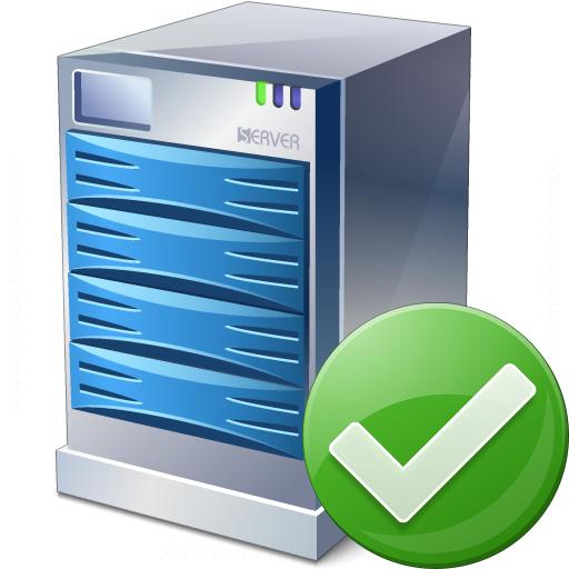 Server Ok Icon