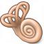 Cochlea Icon 64x64