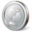 Coin Silver Icon 64x64