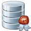 Data Certificate Icon 64x64