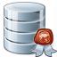 Data Certificate Icon 64x64