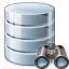 Data Find Icon 64x64