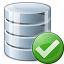 Data Ok Icon 64x64