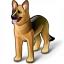Dog Icon 64x64