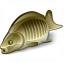 Fish Icon 64x64
