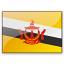 Flag Brunei Icon 64x64