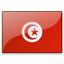 Flag Tunisia Icon 64x64