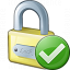 Lock Ok Icon 64x64