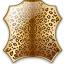 Skin Leopard Icon 64x64